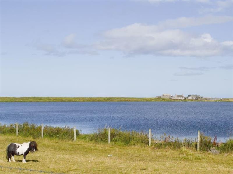 Bayview in nr Burness, Sanday, Orkney Islands - sleeps 2 people