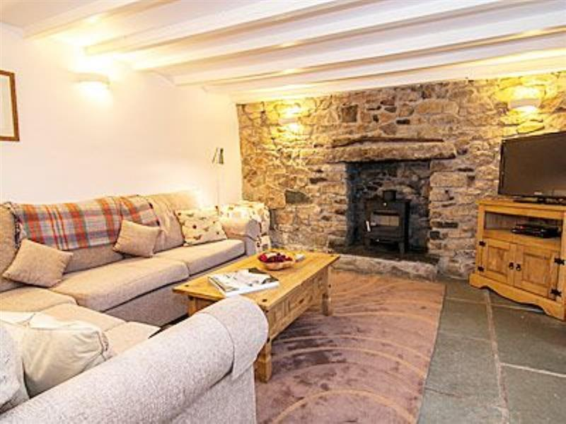 Caddys Corner Farm Lodges - The Farmhouse in Carnmenellis, nr. Falmouth - sleeps 12 people