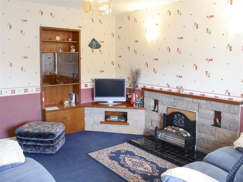 Oystercatcher in Embo, near Dornoch, Highlands - sleeps 5 people
