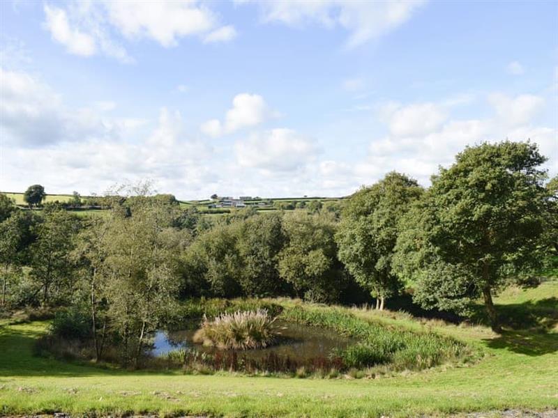Pantmeddyg Farm - Mill Cottage in Cwmsychbant, near Llanybydder, Cardigan - sleeps 3 people