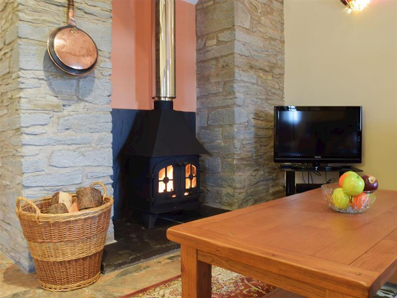 Penwern Fach Holiday Cottages - Gwaun Cottage in Ponthirwaun, near Cardigan, Ceredigion - sleeps 2 people