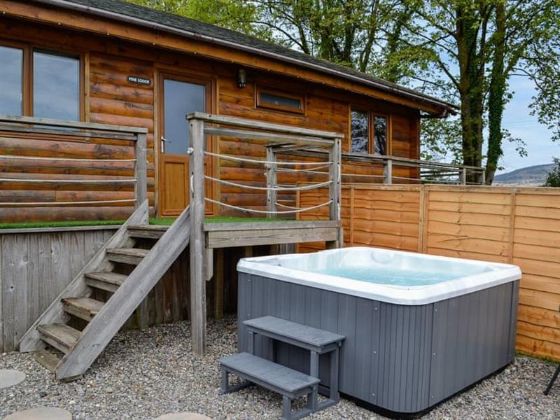 Rose Cotterill Cabins - Pine Lodge in Bryncoch, near Neath, Glamorgan - sleeps 6 people