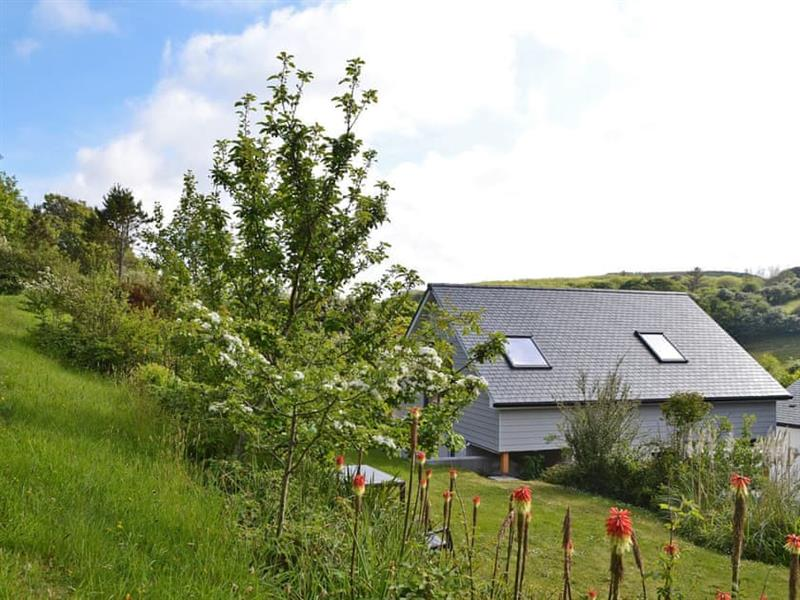 Tolcarne Escape in Newquay - sleeps 8 people