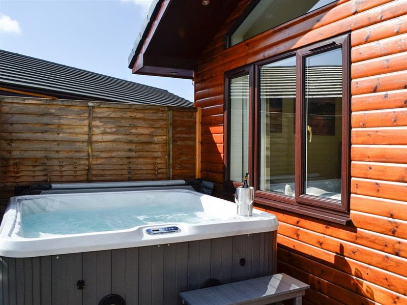 Woodburn Lodges - The Spey in Milton of Campsie, near Kirkintilloch, Glasgow and the Clyde Valley - sleeps 6 people
